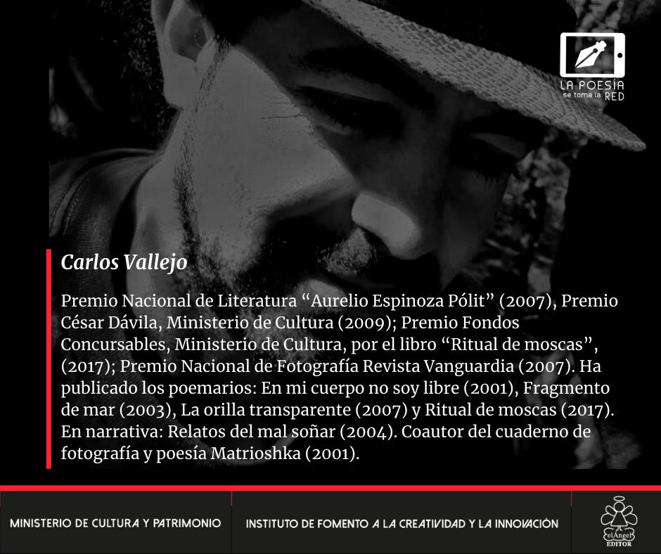 Bio - Carlos Vallejo