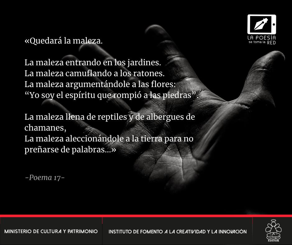 Verso - Cristian Avecillas