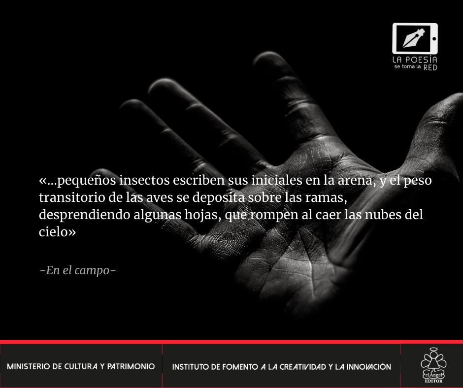 Verso - Jorge Vinueza