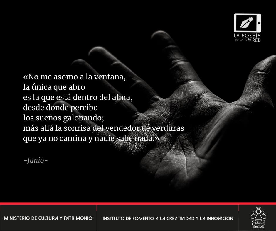 Verso - Ximena Mendoza